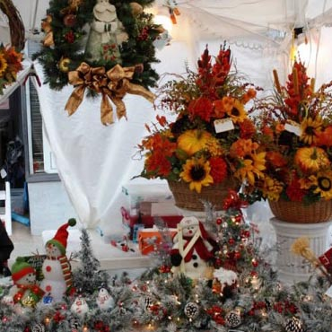 Autumn Leaves Festival - Mount Airy , NC